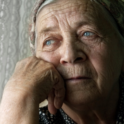 Elder Abuse: Five Case Studies