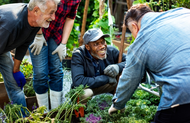 Image result for older gardeners